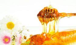 Хранение меда. Как хранить мед в домашних условиях?