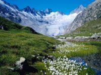 Швейцария — лидер по количеству туристов из Персидского залива