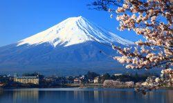 Япония предлагает халяльный туризм