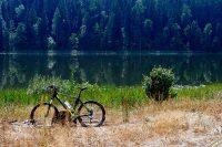 Исследование: велосипед оздоравливает горожан