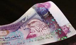 Иностранные инвестиции в экономику ОАЭ достигли $100 млрд