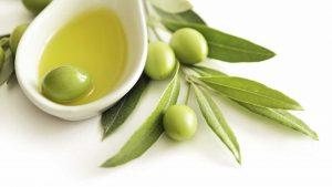 Оливковое масло в Коране и в хадисе